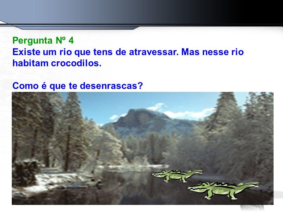 Pergunta Nº 4 Existe um rio que tens de atravessar.