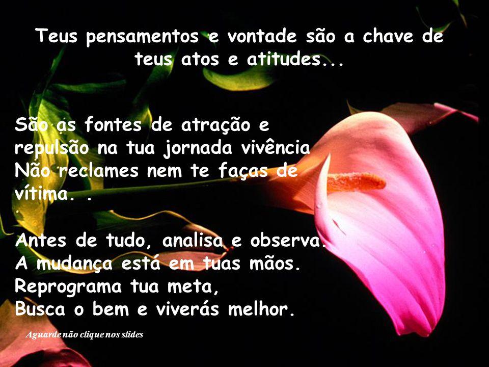 Teus pensamentos e vontade são a chave de teus atos e atitudes...
