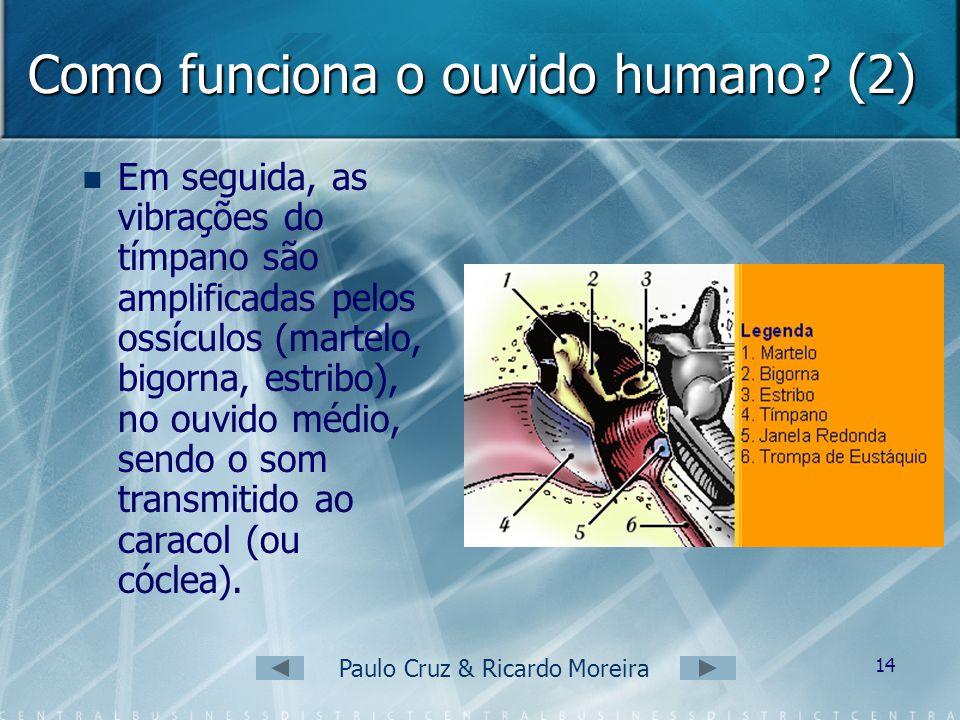 Como funciona o ouvido humano (2)