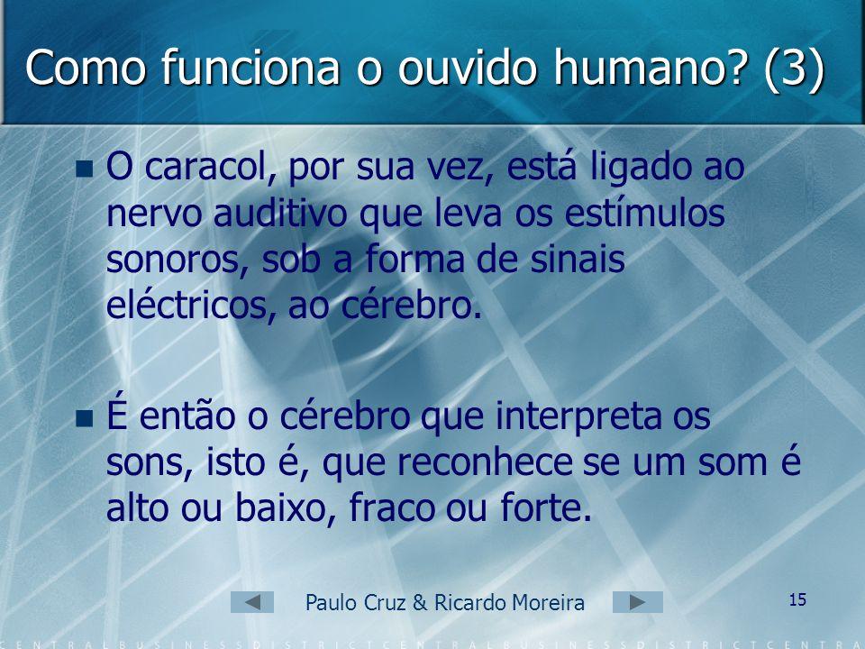 Como funciona o ouvido humano (3)