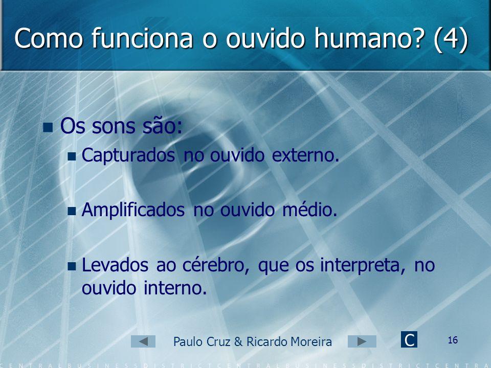 Como funciona o ouvido humano (4)