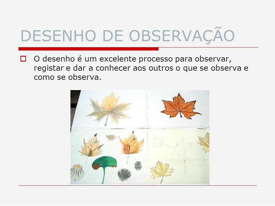 DESENHO DE OBSERVAÇÃO O desenho é um excelente processo para observar, registar e dar a conhecer aos outros o que se observa e como se observa.