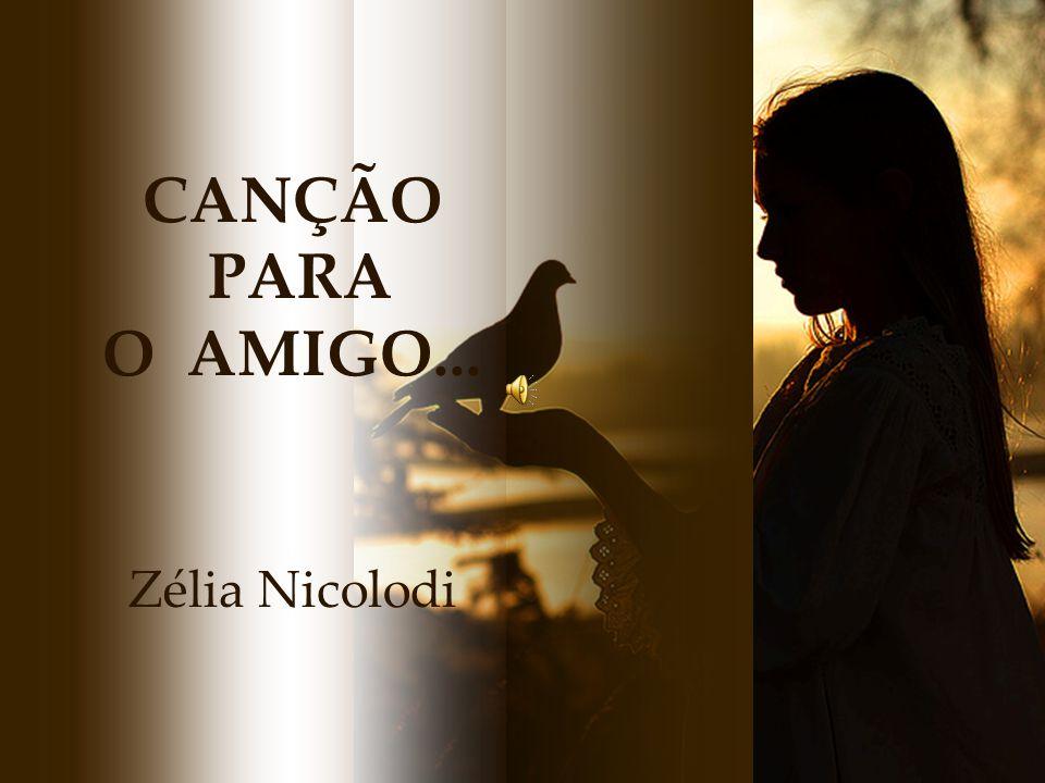 CANÇÃO PARA O AMIGO... Zélia Nicolodi
