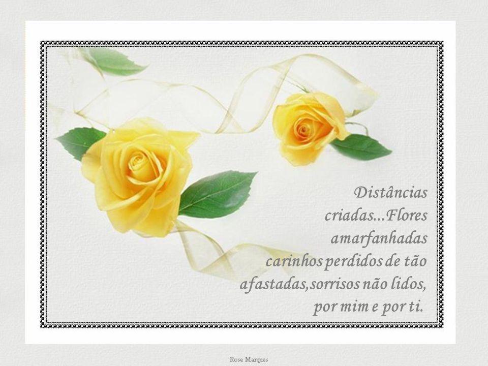 Distâncias criadas...Flores.