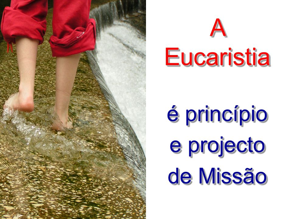 A Eucaristia é princípio e projecto de Missão