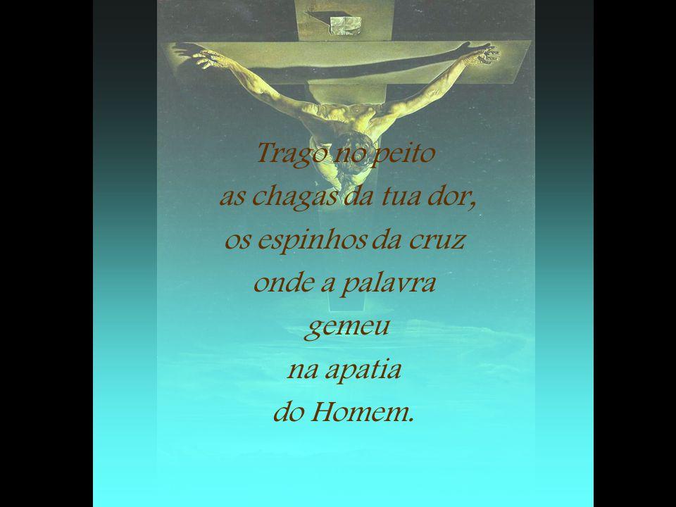 Trago no peito as chagas da tua dor, os espinhos da cruz onde a palavra gemeu na apatia do Homem.