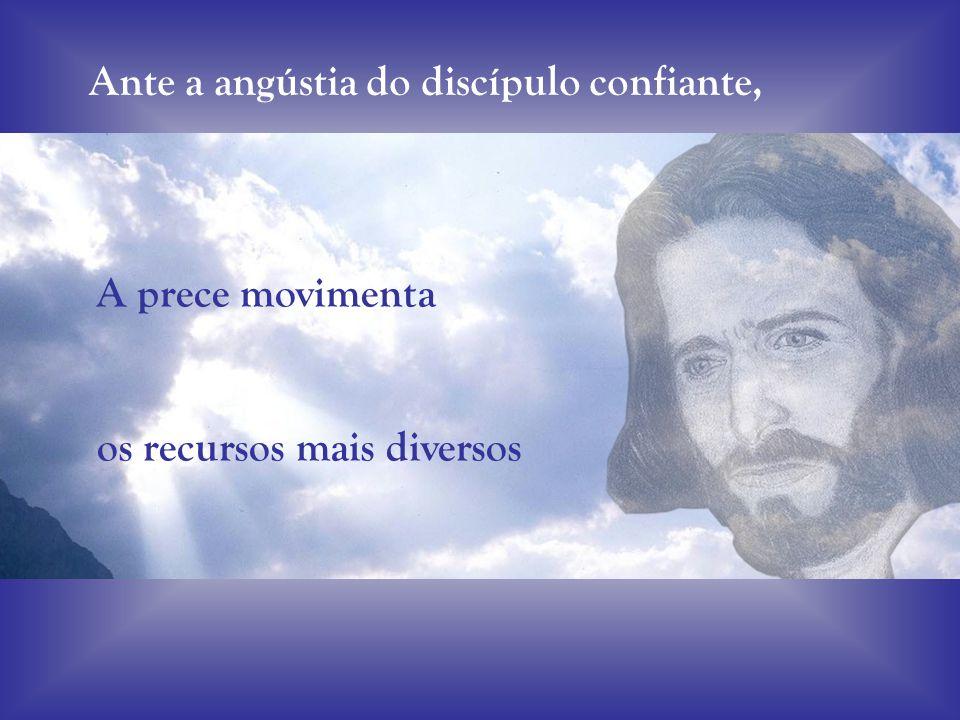 Ante a angústia do discípulo confiante,