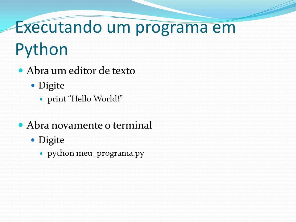 Executando um programa em Python