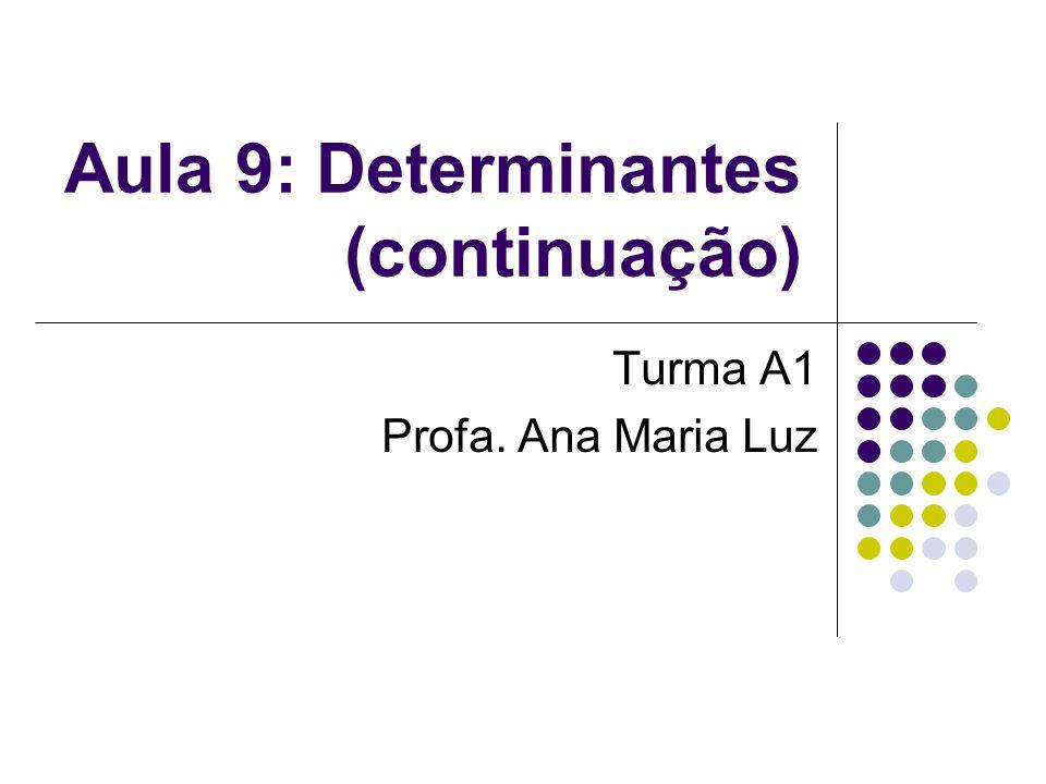 Aula 9: Determinantes (continuação)