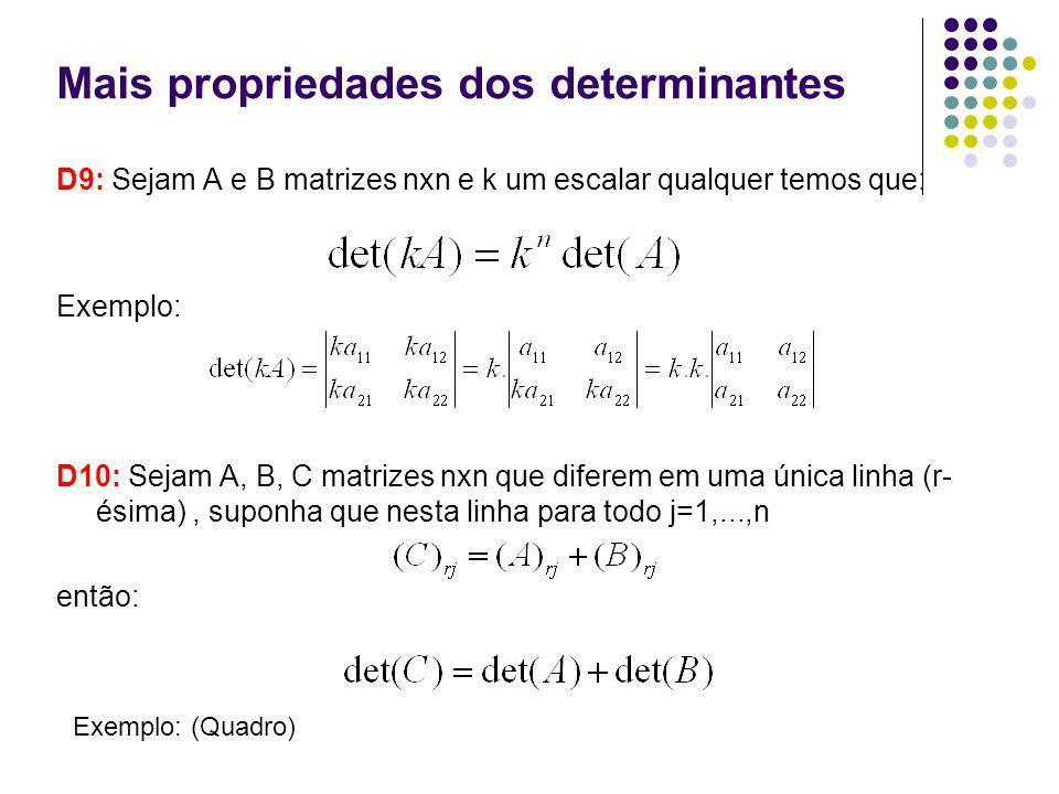 Mais propriedades dos determinantes