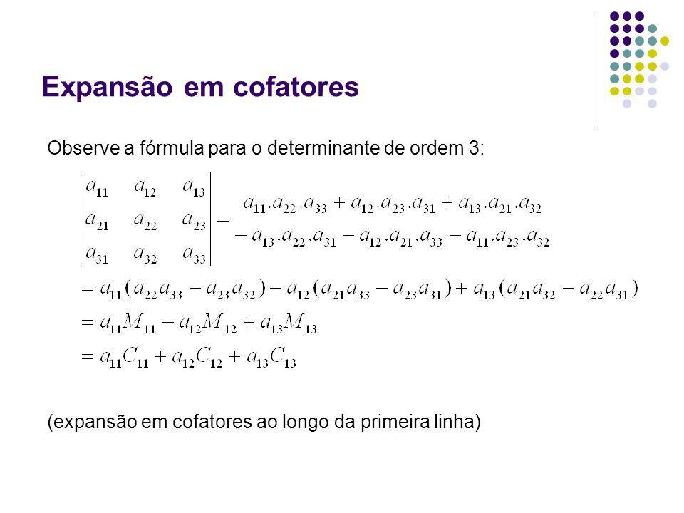 Expansão em cofatores Observe a fórmula para o determinante de ordem 3: (expansão em cofatores ao longo da primeira linha)
