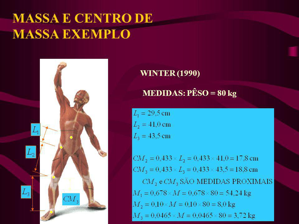 MASSA E CENTRO DE MASSA EXEMPLO