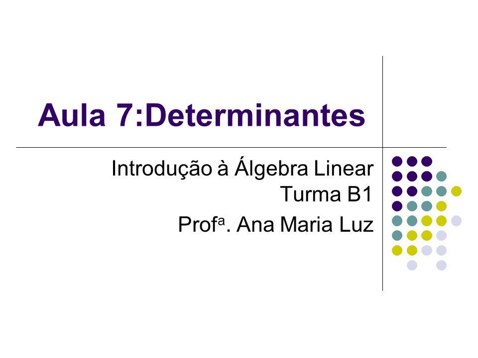 Introdução à Álgebra Linear Turma B1 Profa. Ana Maria Luz