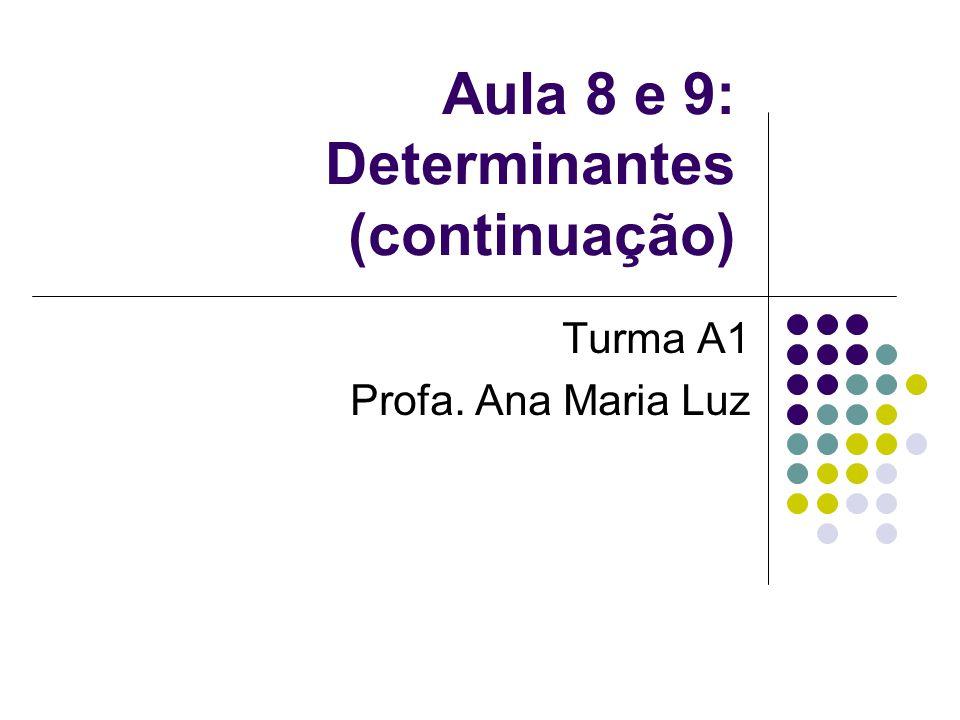 Aula 8 e 9: Determinantes (continuação)