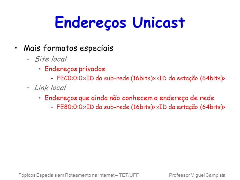 Endereços Unicast Mais formatos especiais Site local Link local