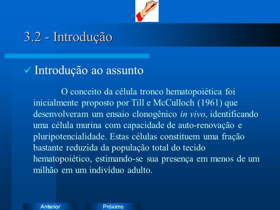 3.2 - Introdução Introdução ao assunto