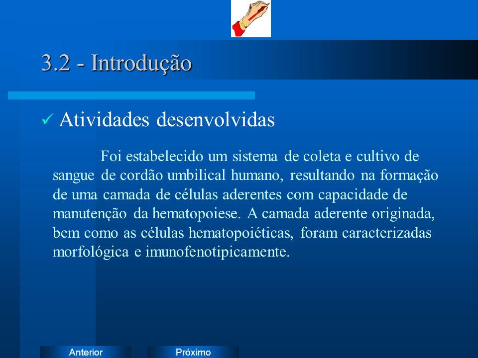 3.2 - Introdução Atividades desenvolvidas