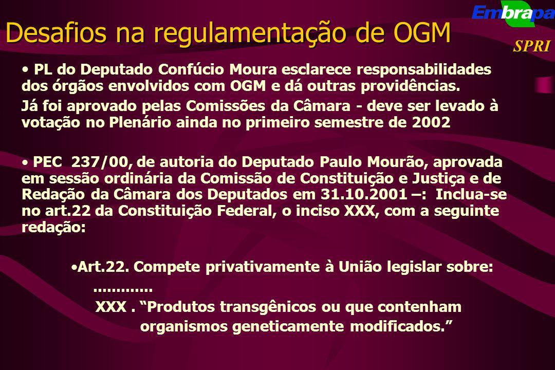 Desafios na regulamentação de OGM