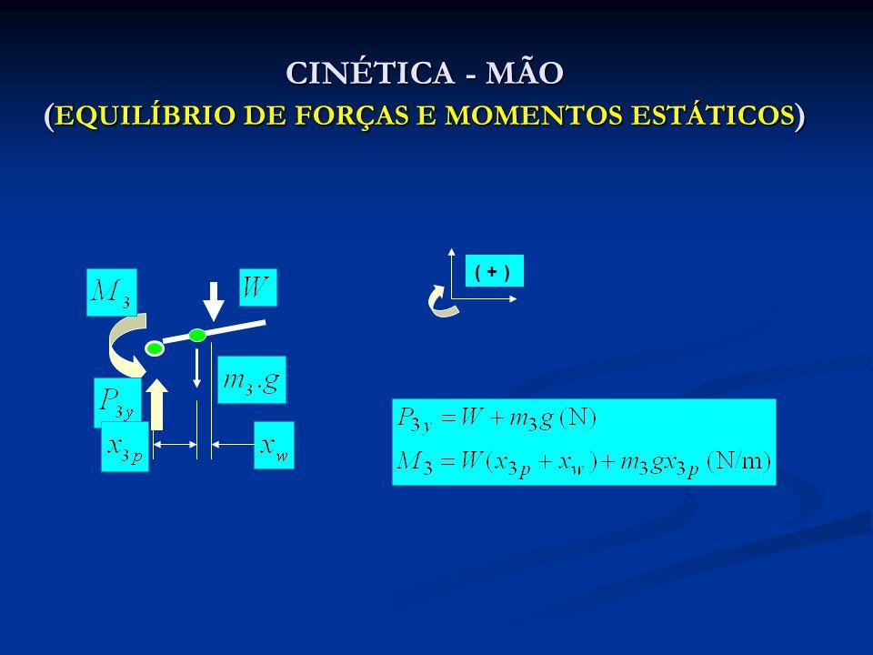 CINÉTICA - MÃO (EQUILÍBRIO DE FORÇAS E MOMENTOS ESTÁTICOS)