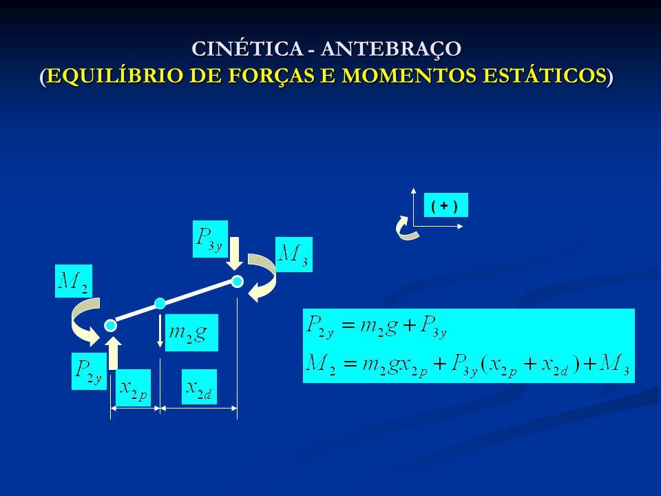 CINÉTICA - ANTEBRAÇO (EQUILÍBRIO DE FORÇAS E MOMENTOS ESTÁTICOS)