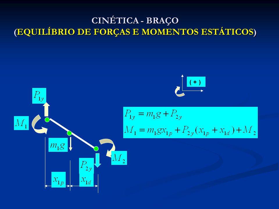 CINÉTICA - BRAÇO (EQUILÍBRIO DE FORÇAS E MOMENTOS ESTÁTICOS)