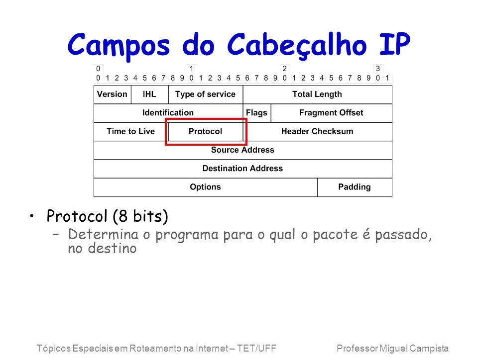 Campos do Cabeçalho IP Protocol (8 bits)