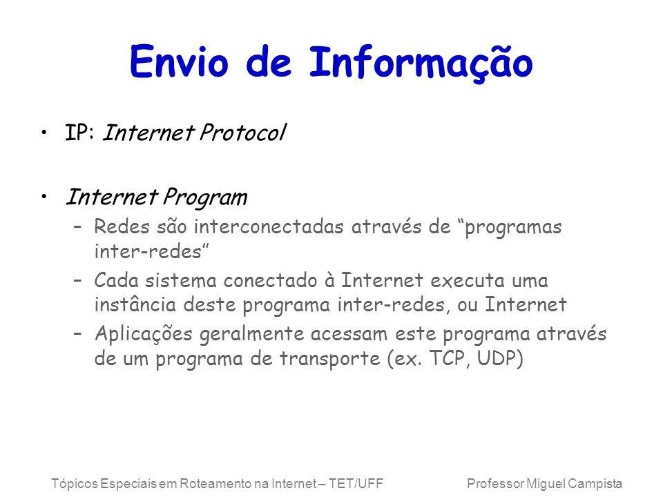 Envio de Informação IP: Internet Protocol Internet Program
