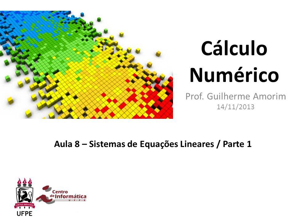 Prof. Guilherme Amorim 14/11/2013