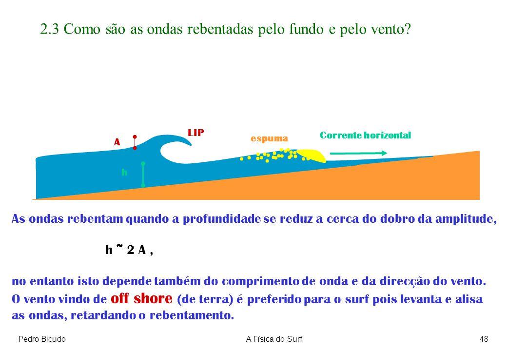 2.3 Como são as ondas rebentadas pelo fundo e pelo vento