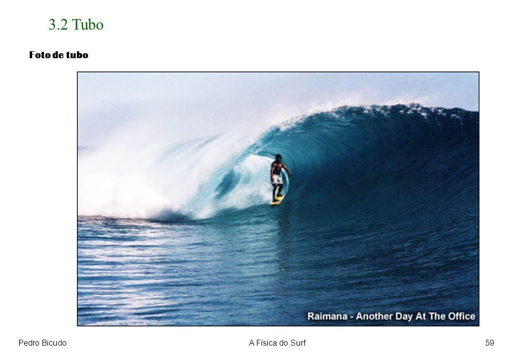 3.2 Tubo Foto de tubo Pedro Bicudo A Física do Surf