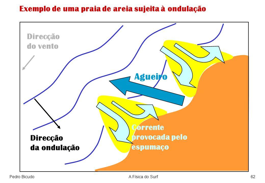 Agueiro Exemplo de uma praia de areia sujeita à ondulação Direcção