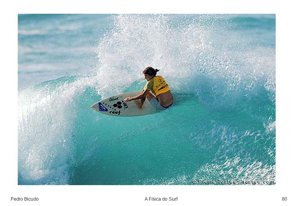 Pedro Bicudo A Física do Surf