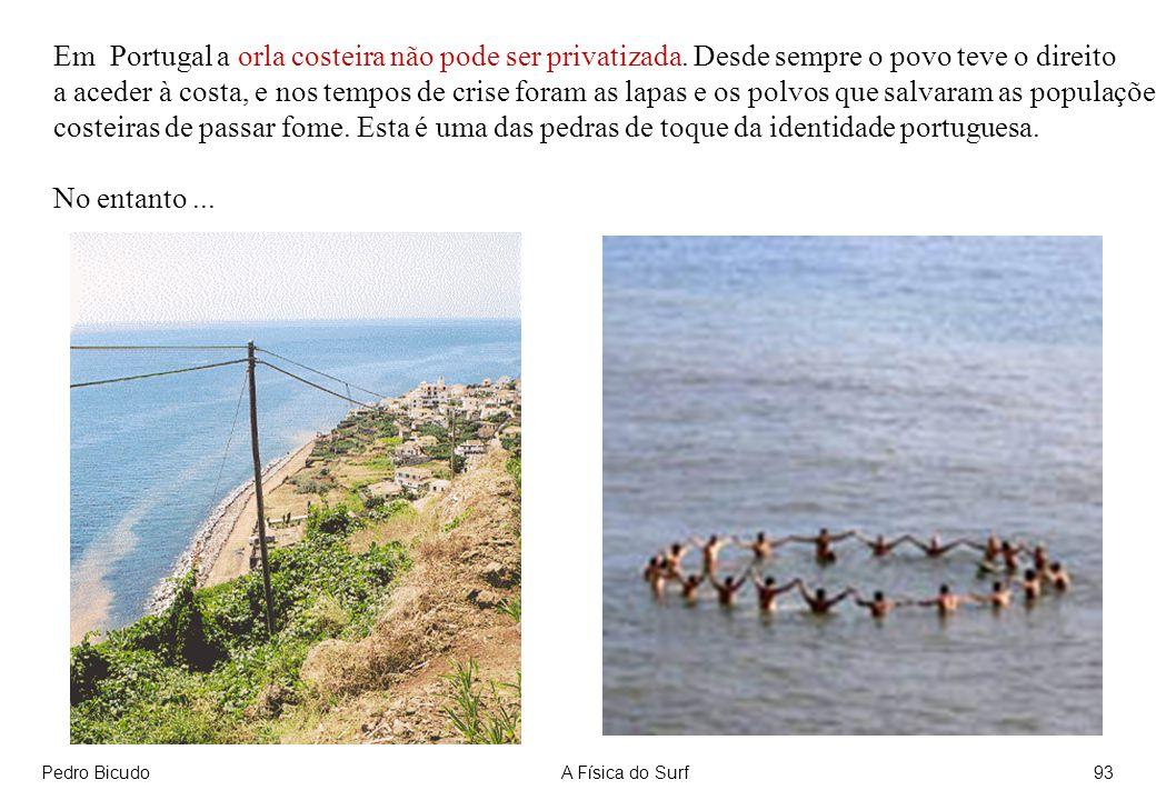 Em Portugal a orla costeira não pode ser privatizada