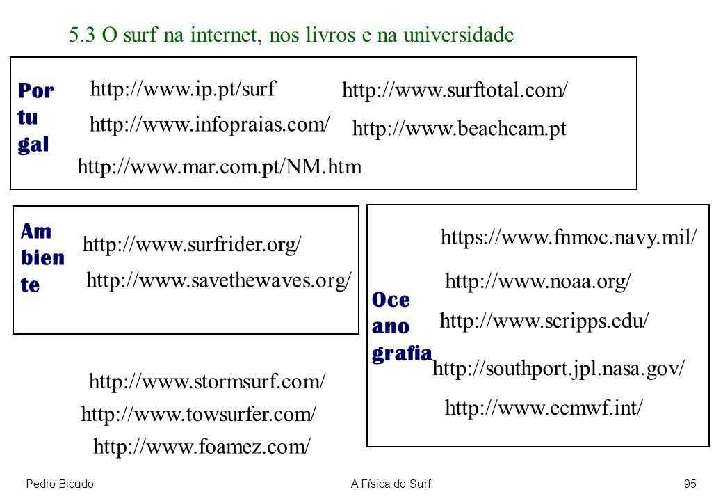 5.3 O surf na internet, nos livros e na universidade