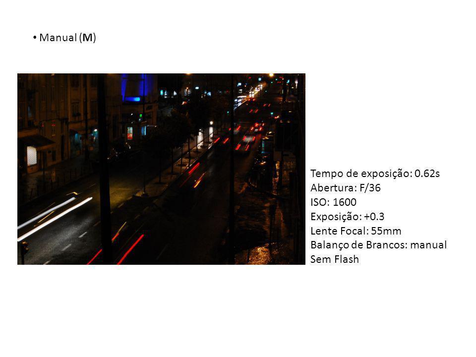 Manual (M) Tempo de exposição: 0.62s. Abertura: F/36. ISO: 1600. Exposição: +0.3. Lente Focal: 55mm.