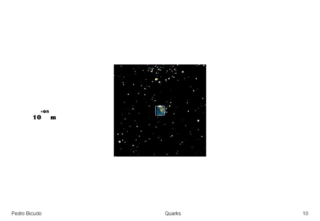 +08 10 m Pedro Bicudo Quarks