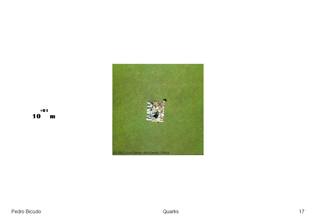 +01 10 m Pedro Bicudo Quarks