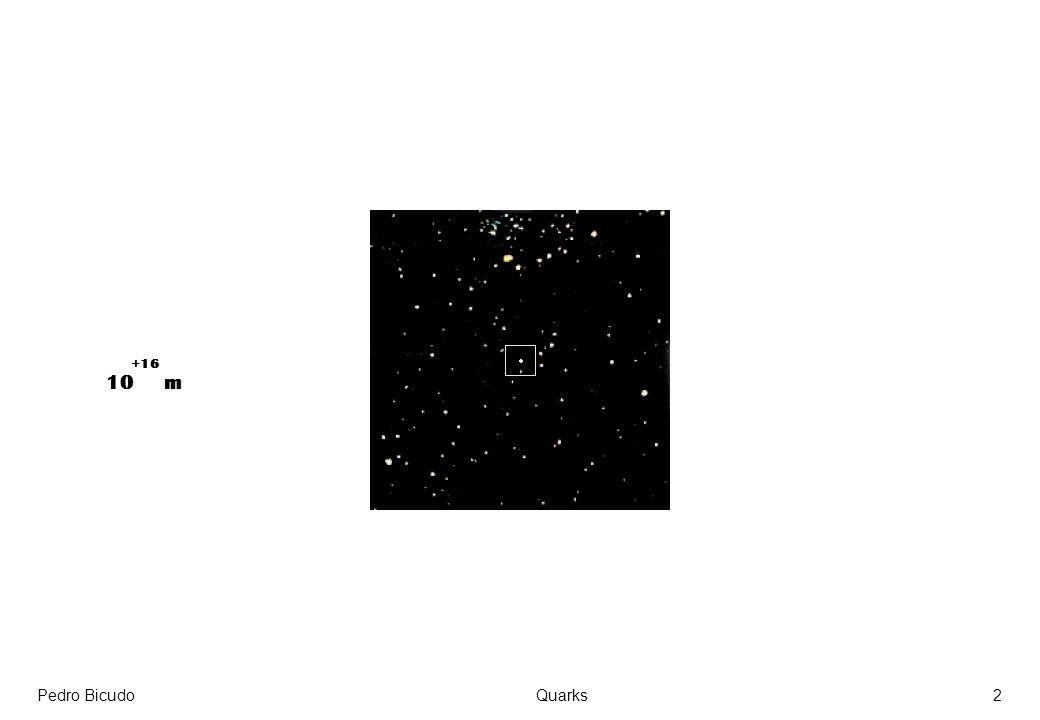 +16 10 m Pedro Bicudo Quarks