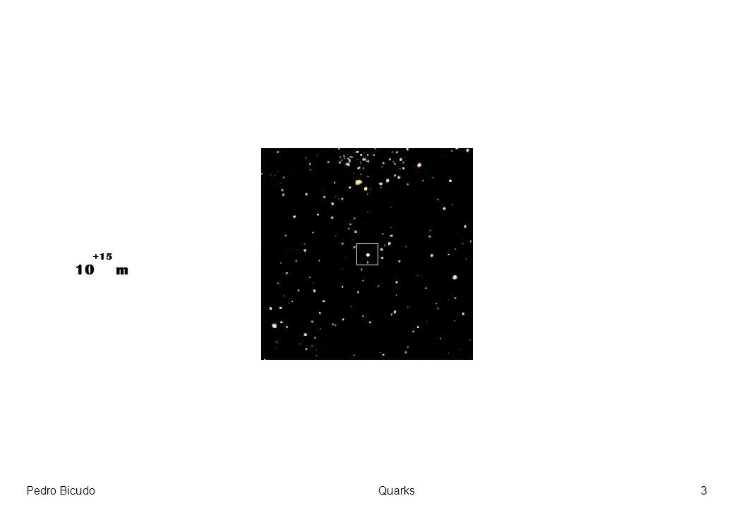 +15 10 m Pedro Bicudo Quarks