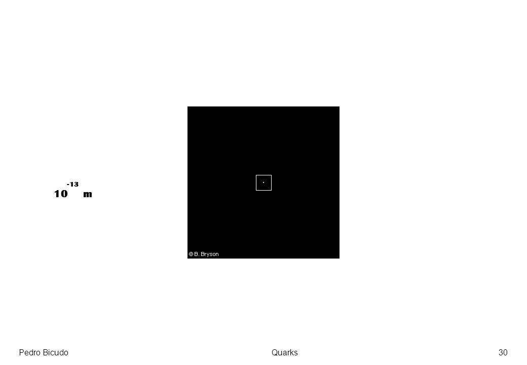 -13 10 m Pedro Bicudo Quarks