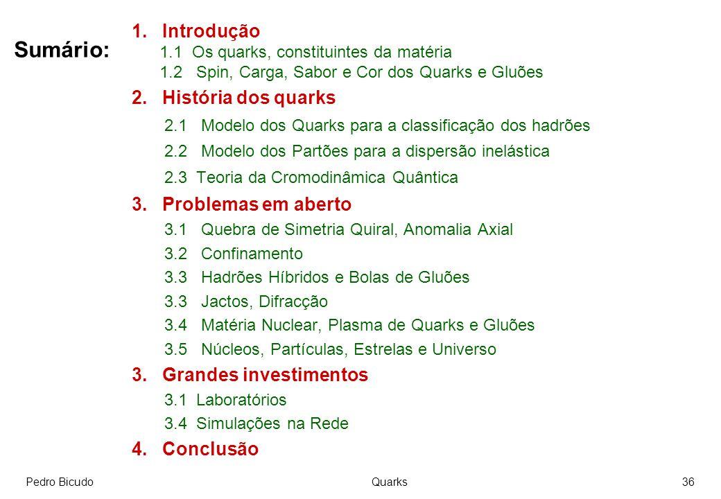 Sumário: 1. Introdução 2. História dos quarks 3. Problemas em aberto