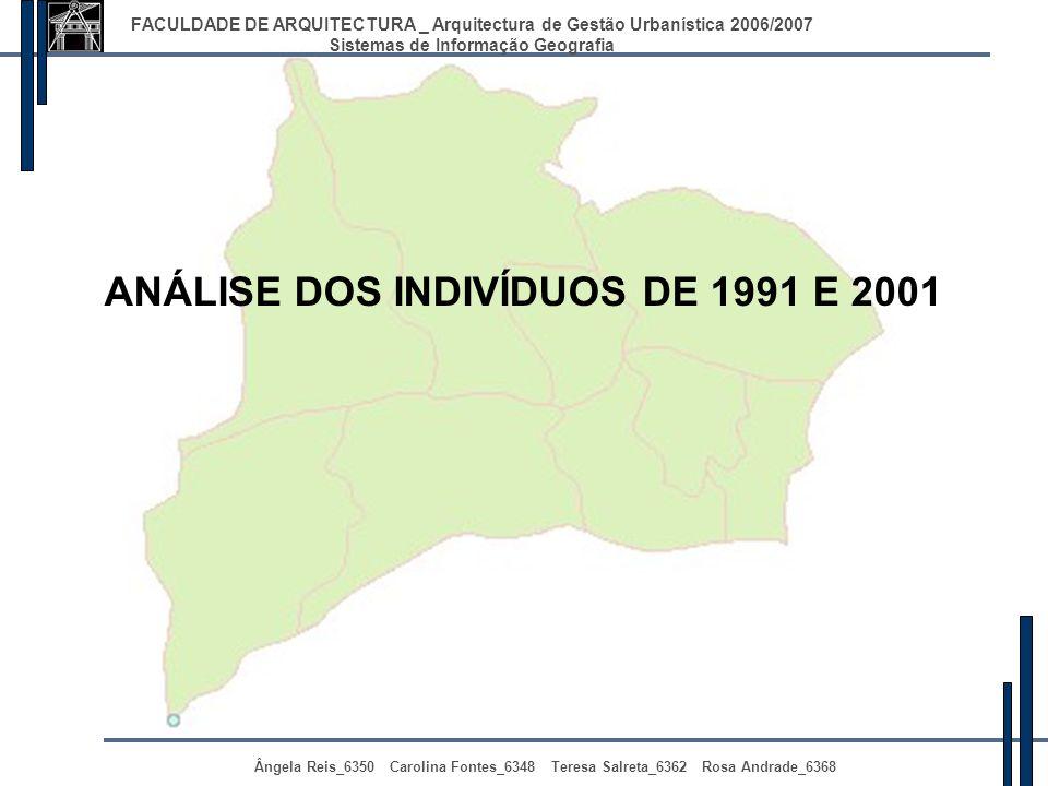 ANÁLISE DOS INDIVÍDUOS DE 1991 E 2001