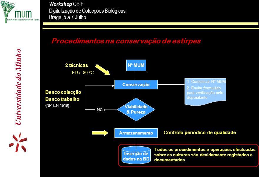 Procedimentos na conservação de estirpes