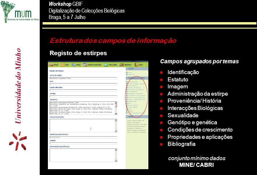 Estrutura dos campos de informação