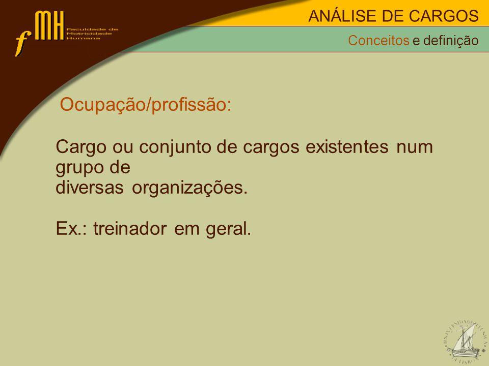 Cargo ou conjunto de cargos existentes num grupo de