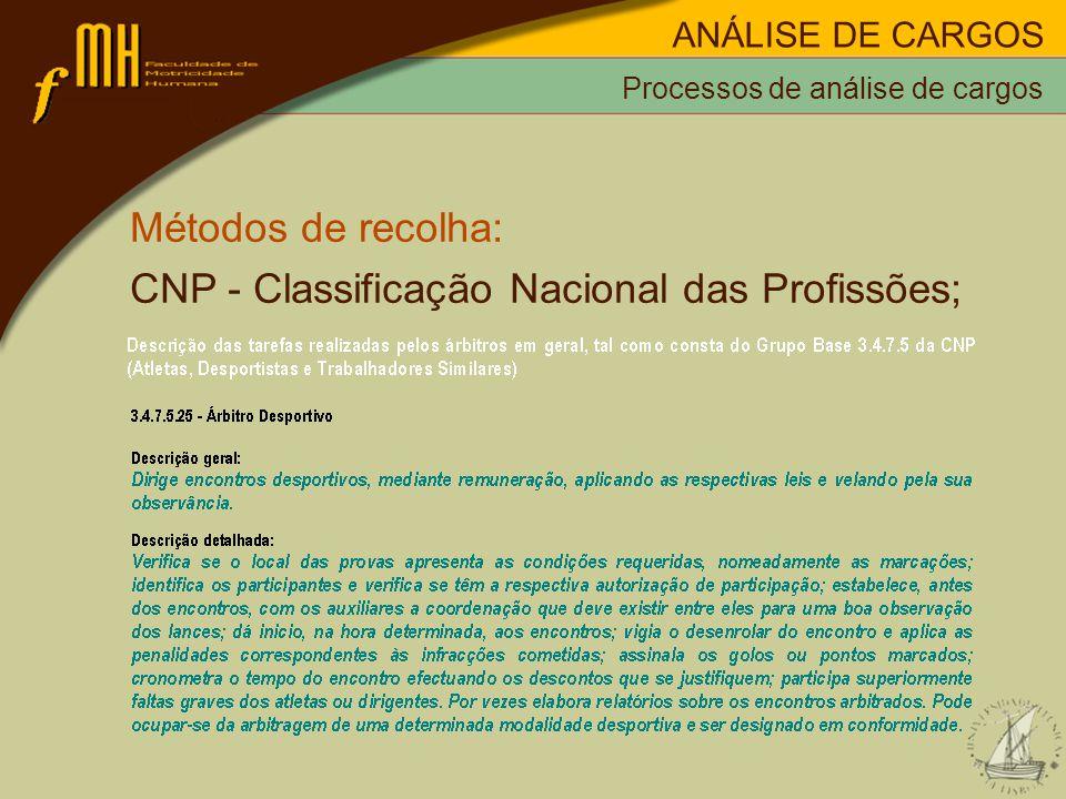CNP - Classificação Nacional das Profissões;