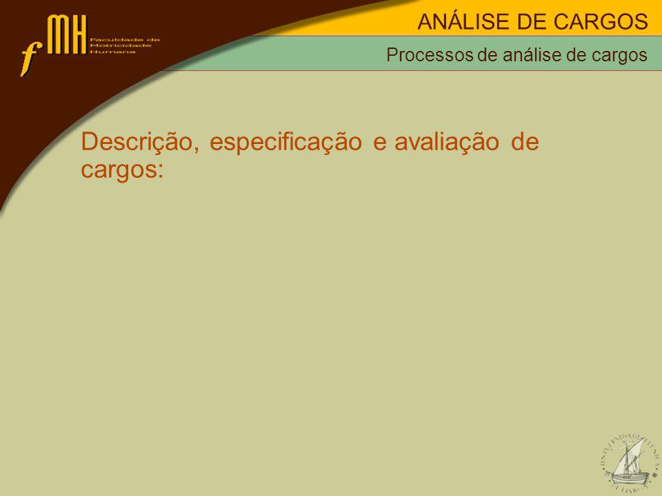 Descrição, especificação e avaliação de cargos: