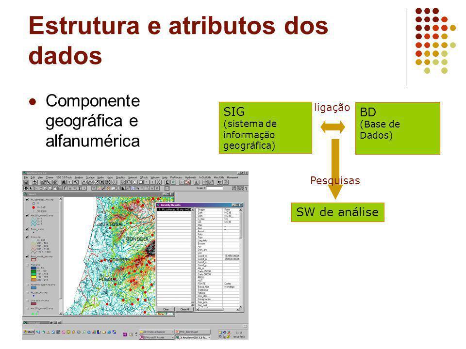 Estrutura e atributos dos dados