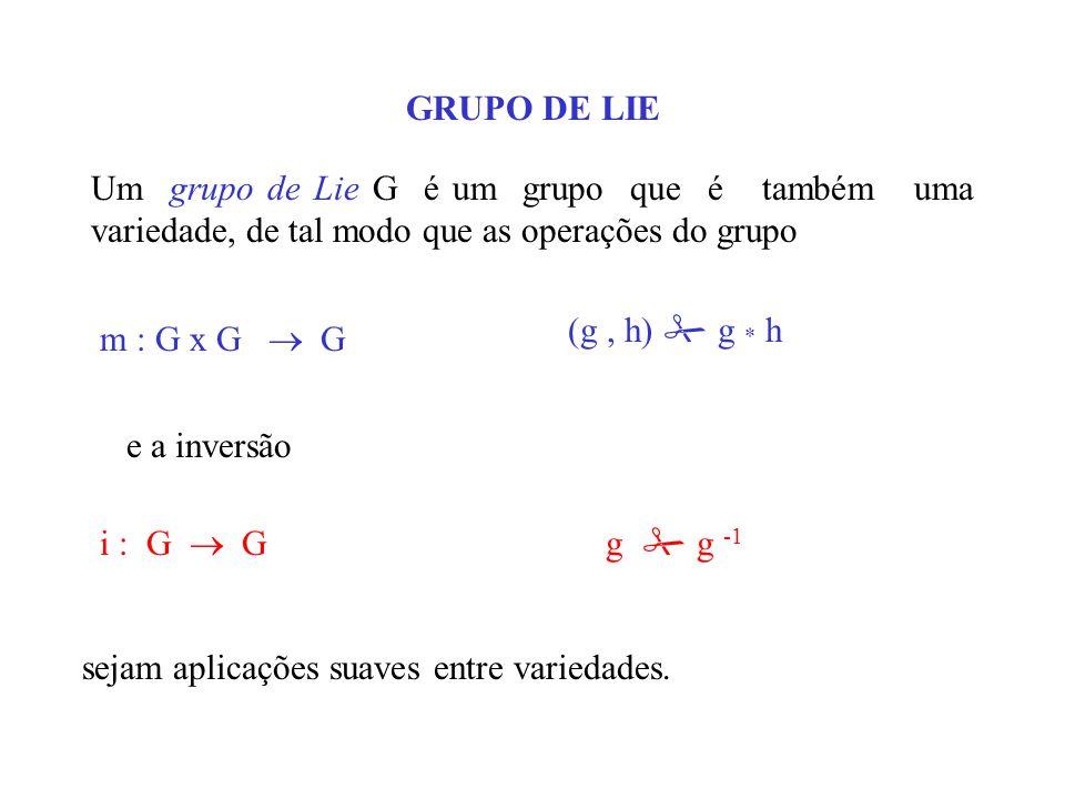 GRUPO DE LIE Um grupo de Lie G é um grupo que é também uma variedade, de tal modo que as operações do grupo.