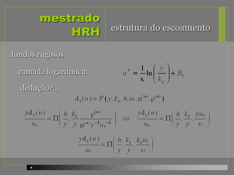 mestrado HRH estrutura do escoamento fundos rugosos